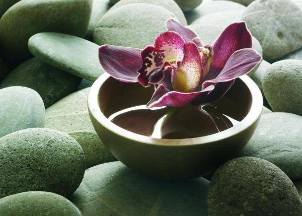 Zöld köveken, vízzel teli fatálkában látható orchidea virága.