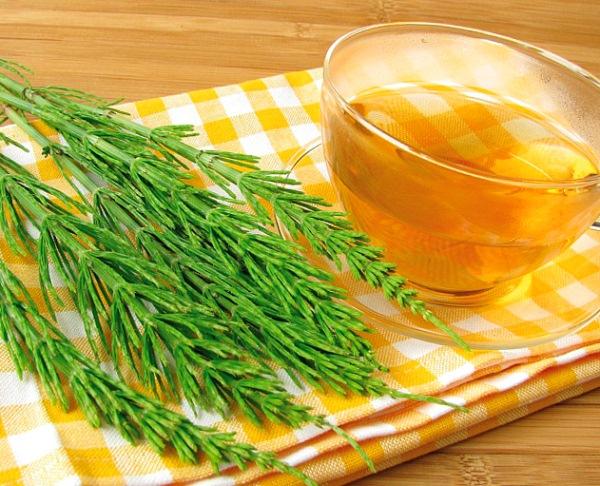 Mezei zsurlóból készült gyógytea üvegpohárban sárga kockás alátéten, mellette a növény zöld hajtásai.