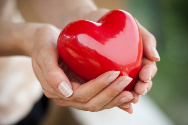 Piros műanyag szívet tart egy női, ápolt kéz két tenyerében.