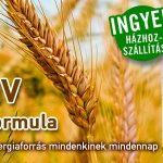 arpaformula_banner-small