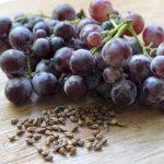 Egy nagy fürt piros szőlő, előtte szőlőmagok.