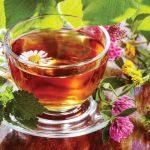 Fitoterápia – növénygyógyászat
