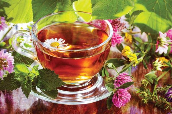 Gyógynövénytea üvegpohárban, mellette friss, színes virágok.