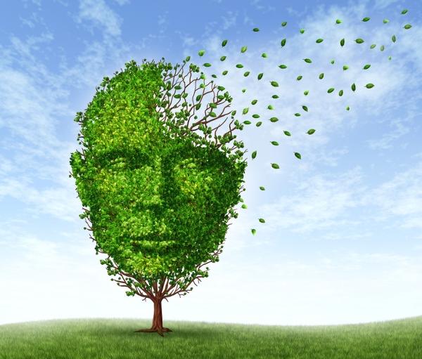 Emberi fejet ábrázoló fa, ahol a levelek egy része elszáll az agy területéről. A kép a demenciára utal.