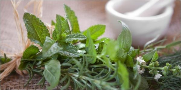 Különféle gyógynövények csokorba kötve, a háttérben mozsár.