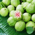 Egzotikus gyümölcsféle, a guava.