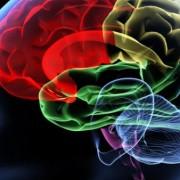 Hogyan előzzük meg az agyi infarktust?
