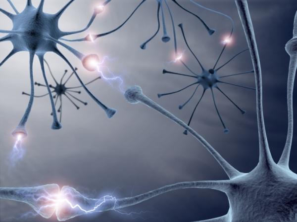 Neuronok különféle kölcsönhatásba lépve egymással.