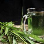 Chlorella algát tartalmazó ital, mellette vazi növények, algák.