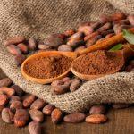 Cukorbetegség ellen kakaó, kókuszolaj és wakame