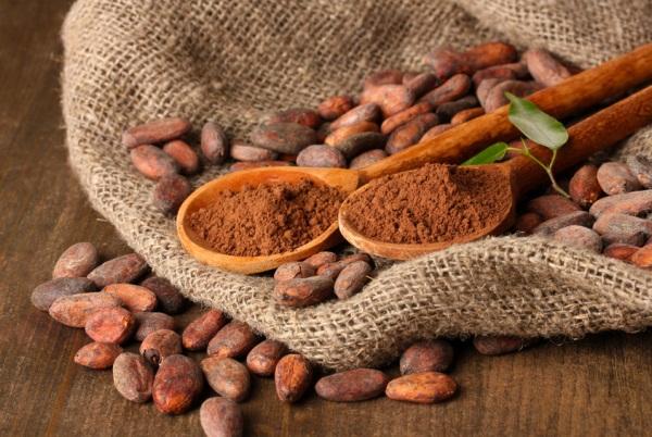 Vászonzsákon igazi kakaóbabok, közöttük két fakanálon őrölt kakaó.