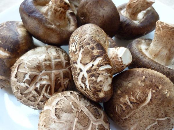 Shiitake gombák egy csoportban.