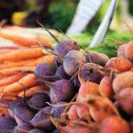 Fitotápanyagokat tartalmazó zöldségek: sárgarépa, cékla, retek.