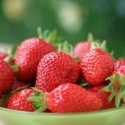 Eper – a fenséges C-vitamin-bomba