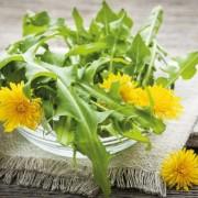 Két hasznos segítő a mindennapokban: asztaxantin és keserűanyagok