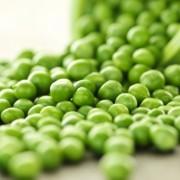Borsófehérje – erős aminosavakkal
