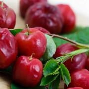 A C-vitamin javítja az érfunkciókat