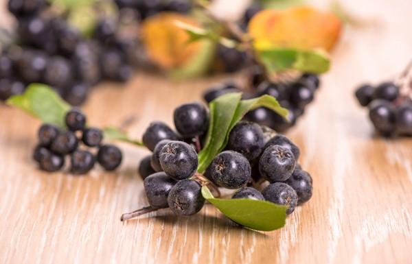 Fekete berkenye bogyói egy fa asztallapon.