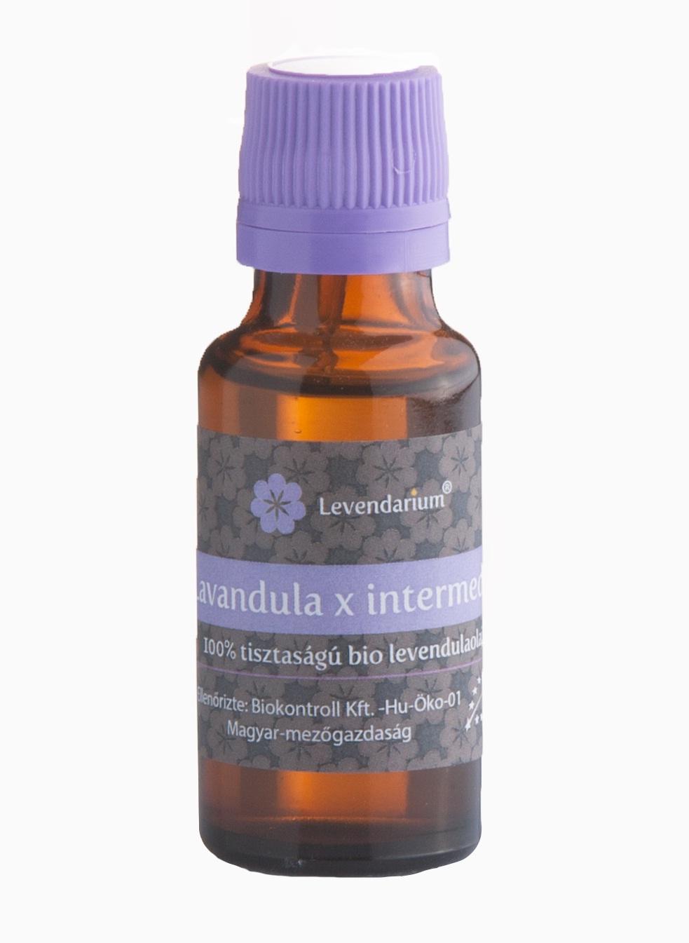 lavandula x intermedia 20 ml