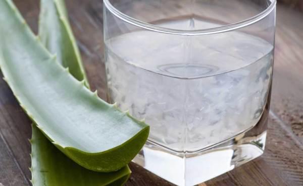 Aloe vera növény húsos levele és benne lévő zselés anyag egy pohárba kiöntve.