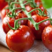 Paradicsom – akár zöldség, akár gyümölcs, jót tesz nekünk!