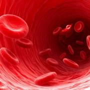 Az egészséges erek védenek a cukorbetegségtől