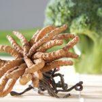 Kifeljett hernyógomba (Cordyceps sinensis) egy fej brokkoli előtt.