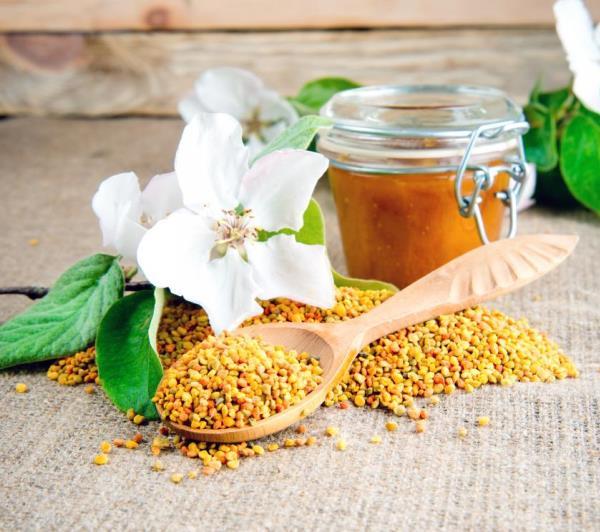 Méhkenyér (más néven perga) egy fakanálban és mellette a terítőn szétszórva, a háttérben fehér virág és méz.