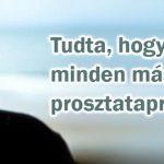 mehkenyer_prosztata_1024
