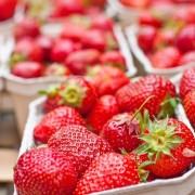 Miért együnk epret, ha magas a vérnyomásunk?