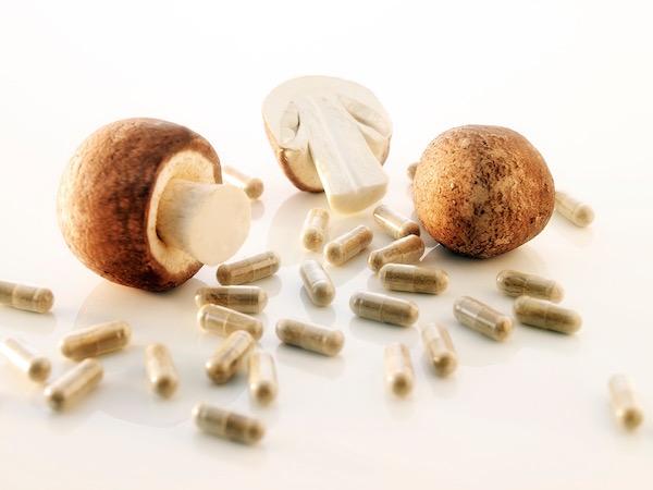 Agaricus blazei gyógygombák (mandulagombák) és a belőlük készült étrend-kiegészítő kapszulák.