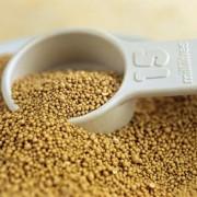 A kevéssé ismert orotsav, vagyis a B13-vitamin