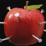 Piros almába szúrt vasszögek, melyek a népi hiedelem szerint tökéletesek vaspótlásra.