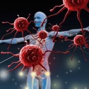 7 tény és tévhit egészséggel és betegséggel kapcsolatban