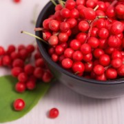A sokféle ízű távol-keleti gyümölcs, avagy a kínai kúszómagnólia