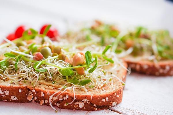 Teljes kiőrlésű magos kenyérszeletek lucernacsírával meghintve.