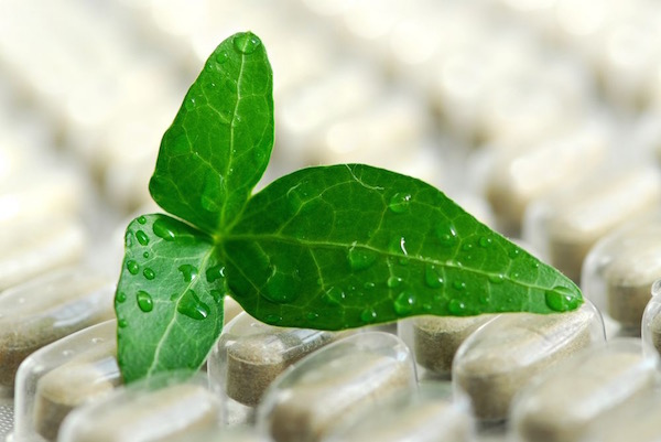 Gyógynövény levele a belőle készült étrend-kiegészítő tablettán.