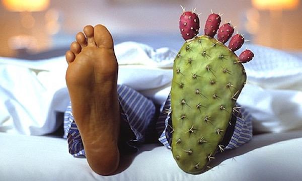 A paplan alól egy pizsamába bújtatott lábfej lóg ki, a másik láb helyén egy talp formájú kaktusz van.