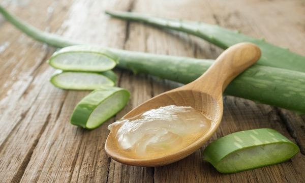 Aloe vera levele egyben és szeletekre vágva, egy kis fakanálban a leveléből kinyomott zselészerű anyag.