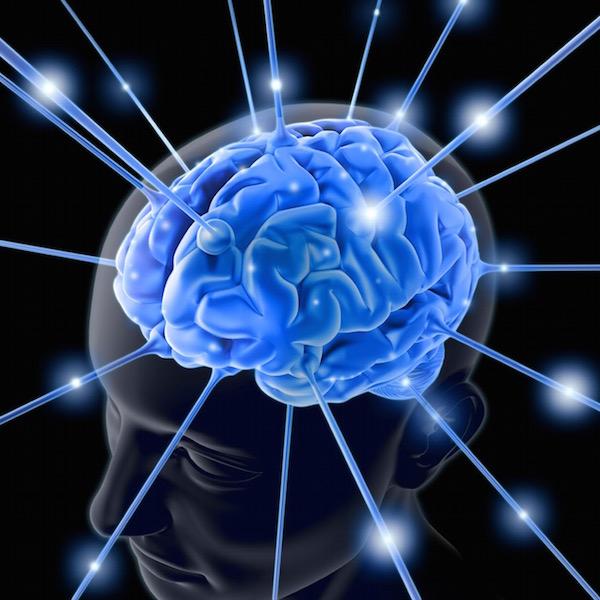 Sematikus rajz, az emberi agy kék színnel kiemelve, melybe áramlanak kék csatornákon a tápanyagok.