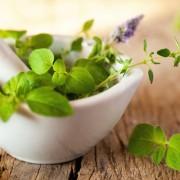 Gyógynövények hajproblémákra