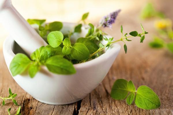 Különféle friss gyógynövények egy fehér mozsárban, összetörésre várva.