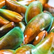A glükozamin az ízületek és porcok egészségének megőrzéséért felel