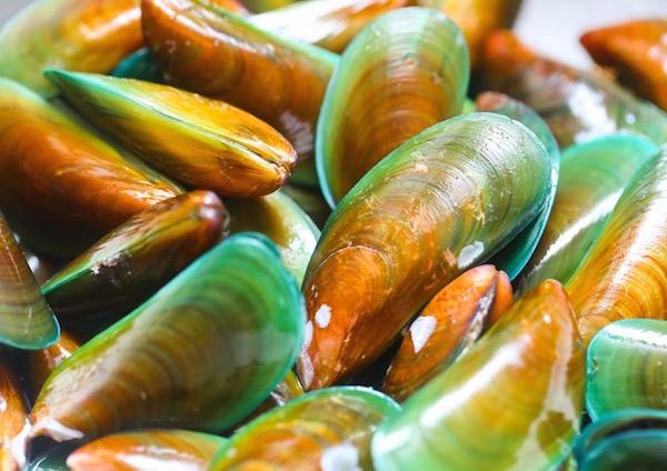 A legtöbb glükozamint tartalmazó élelmiszer, az Új-Zélandon található tengeri zöldkagyló.