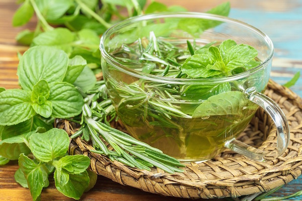 Üvegcsészében lévő gyógynövénytea frissen szedett növényekből.