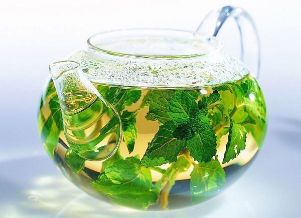 Friss gyógynövényekből készült gyógytea átlátszó üvegkancsóban.