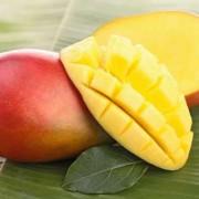 A szerelem szimbóluma Indiában: mangó