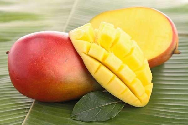 Két mangó egymás mellett, az egyikből egy vastag szelet levágva, felkockázva.