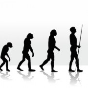 Civilizációs betegségek, amelyek testi, lelki és szellemi nyomorba döntenek