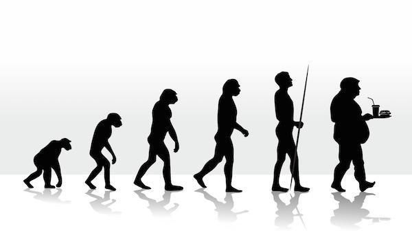 Emberi evolúció.